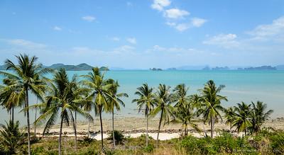 Beachfront with palm trees, Ko Yao Yai, Thailand