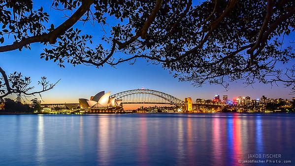 Sydney Skyline