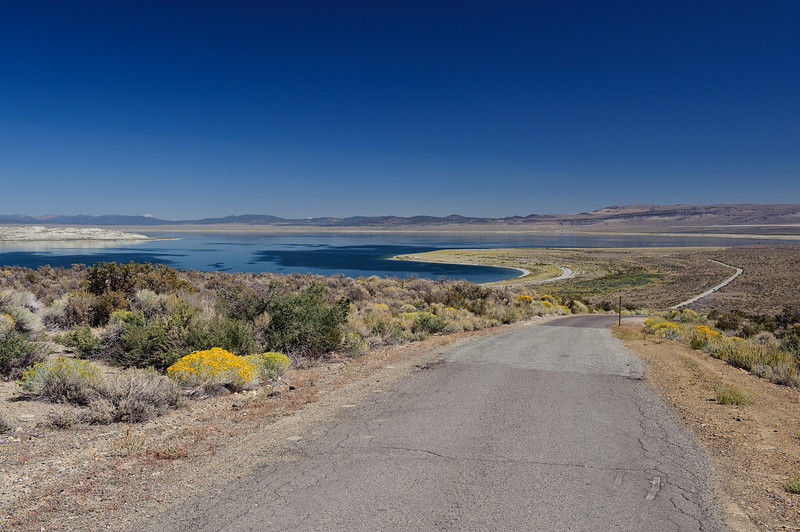 Tioga road approaching Mone Lake