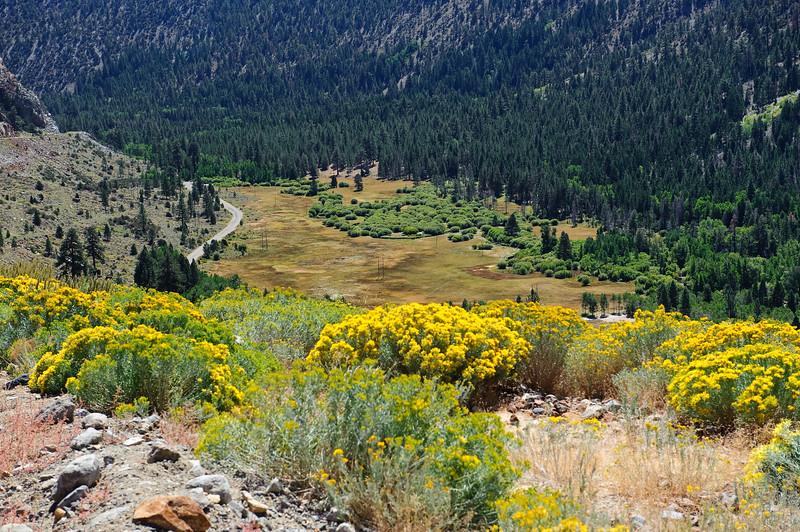 Mountain colors on Tioga road, Yosemite