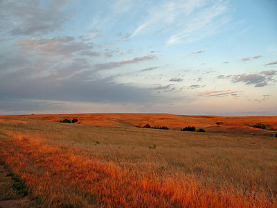 Badlands National Park, South Dakota 28