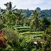 Bali 16 - 120