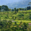 Bali 16 - 108