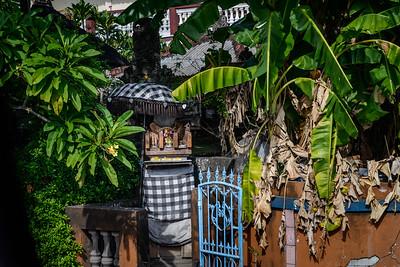 Bali 16 - 022