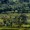 Bali 16 - 109