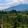 Bali 16 - 111