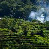 Bali 16 - 114