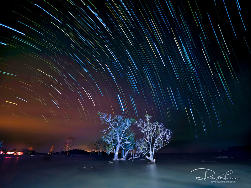 Using Live View Compo, 10s interval, 45min exposure, ISO 1600. Laowa lens f2, 7.5mm