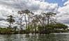 Hacienda Tijax Jungle Trail & Canopy Tour