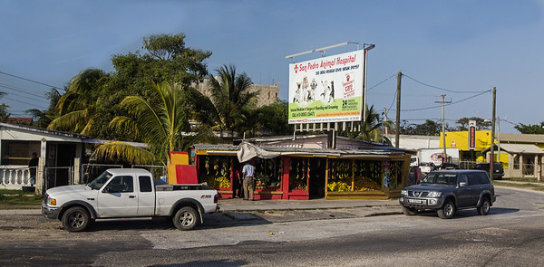 The Contryside of Belize; Belize