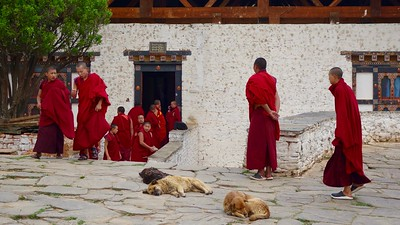 monks at Paro Dzong
