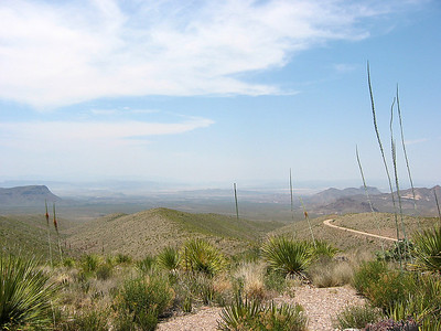 Big Bend National Park, Texas (20)