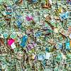 Money Wall at Bloody Mary's, Bora Bora, Tahiti, French Polynesia