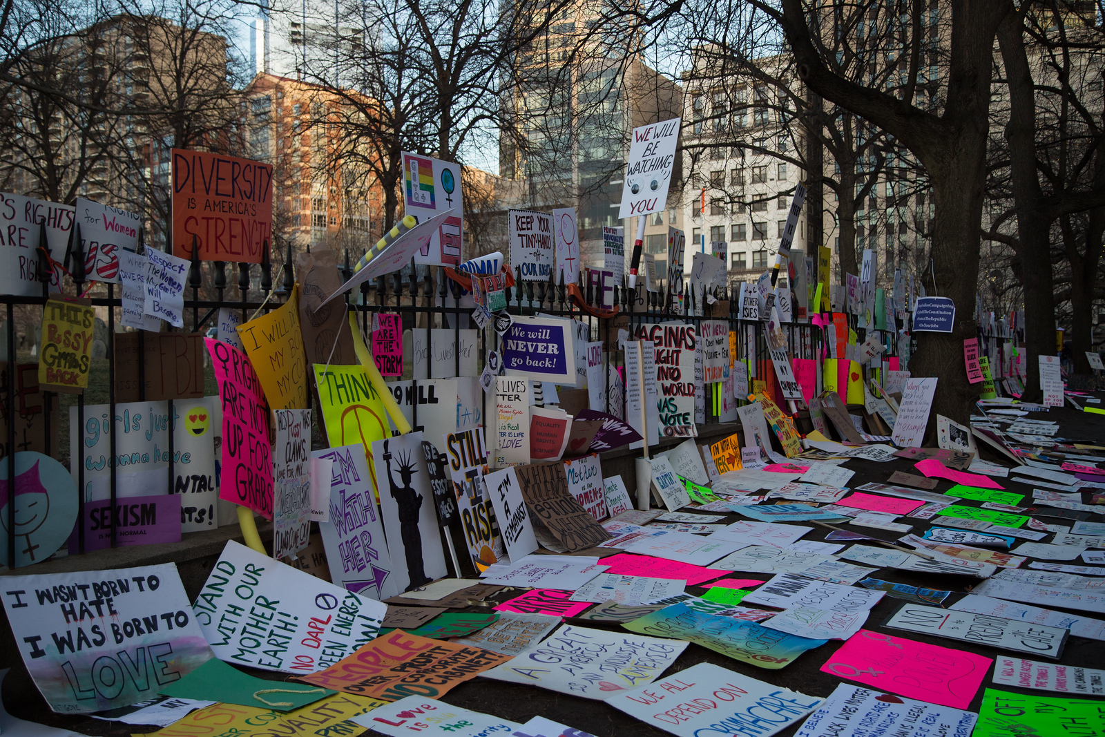 protest sign's
