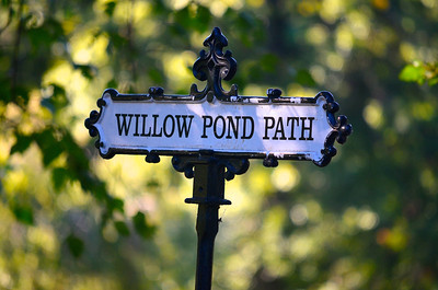 Willow Pond Path, Mount Auburn Cemetery