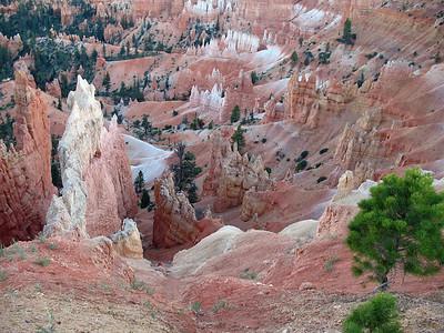 Bryce Canyon, Utah (11)
