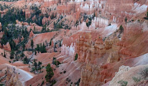 Bryce Canyon, Utah (9)