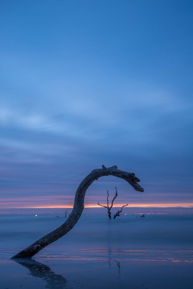 https://themaryphotographer.smugmug.com/Galleries/Travel/Capers-Island/i-23ghNwZ/buy