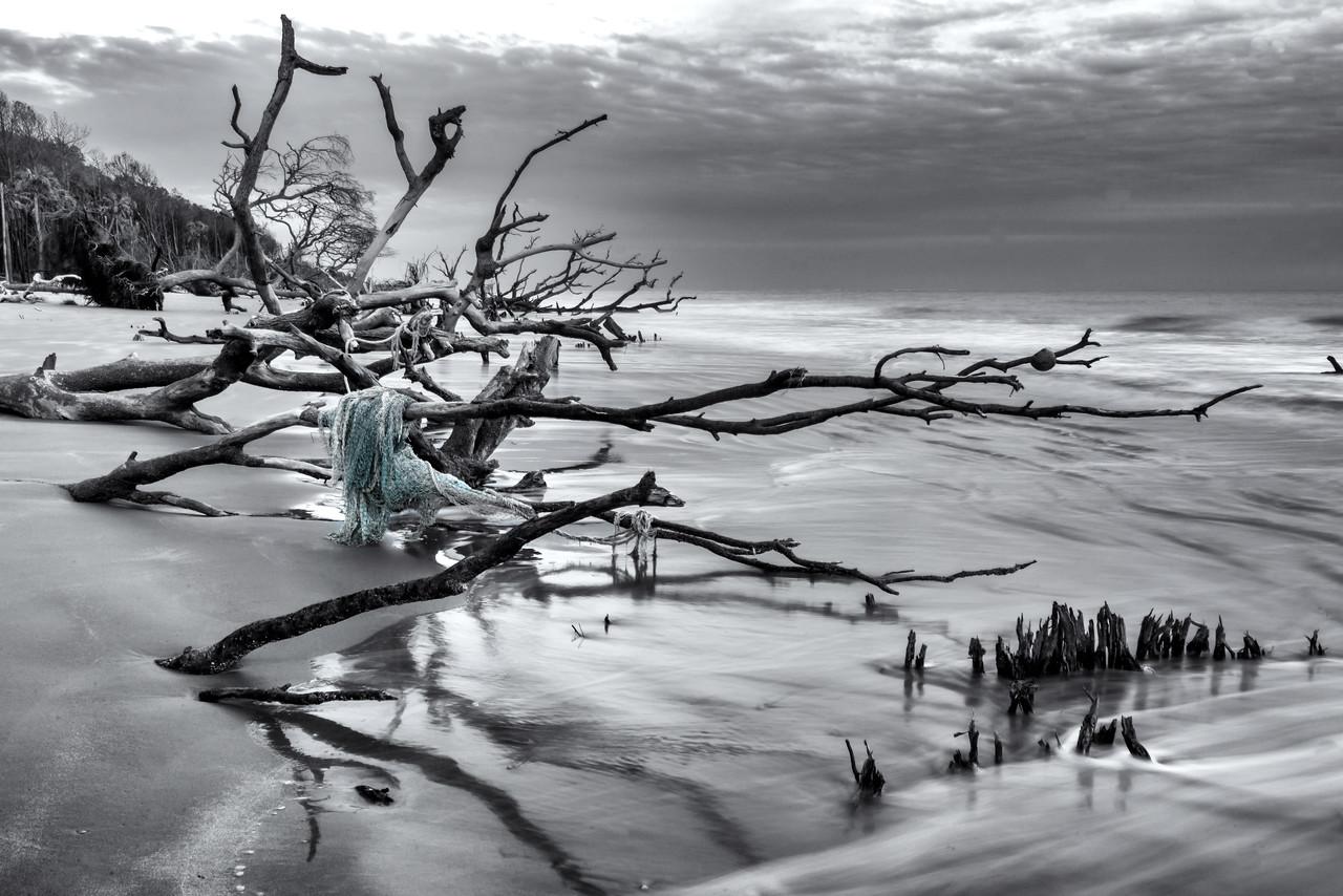 https://themaryphotographer.smugmug.com/Galleries/Travel/Capers-Island/i-qpHrMKF/buy