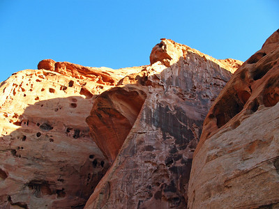 Capitol Reef National Park, Utah (Cohab Canyon Trail) (7)