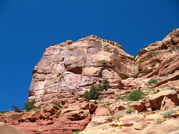 Capitol Reef National Park, Utah (Cassidy Arch Trail) (3)
