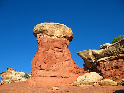 Capitol Reef National Park, Utah (Cohab Canyon Trail) (3)