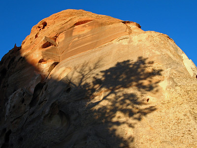 Capitol Reef National Park, Utah (Cohab Canyon Trail) (8)