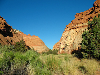 Capitol Reef National Park, Utah (Cohab Canyon Trail) (12)