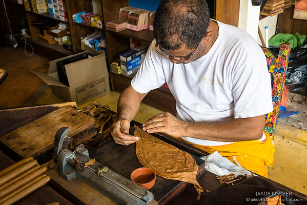 LAS TERRENAS, DOMINICAN REPUBLIC - DEZ 17, 2015: man about to roll a cigar in a traditional cigar production factory
