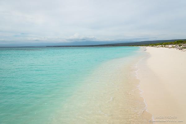"""Beach of """"Bahia de las Aguilas"""""""