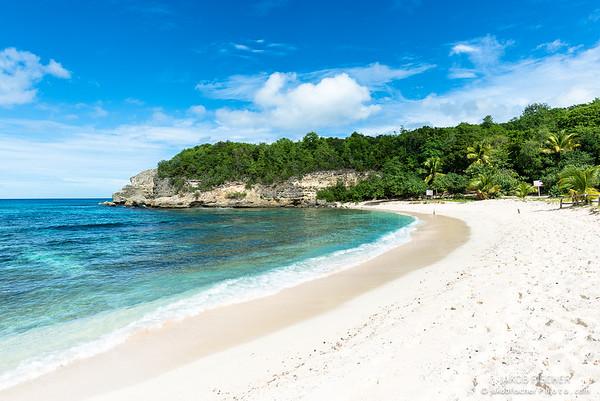 "Beach of ""Anse Laborde"""