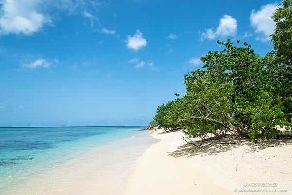 "Beach ""La Plage du Souffleur"", Guadeloupe"