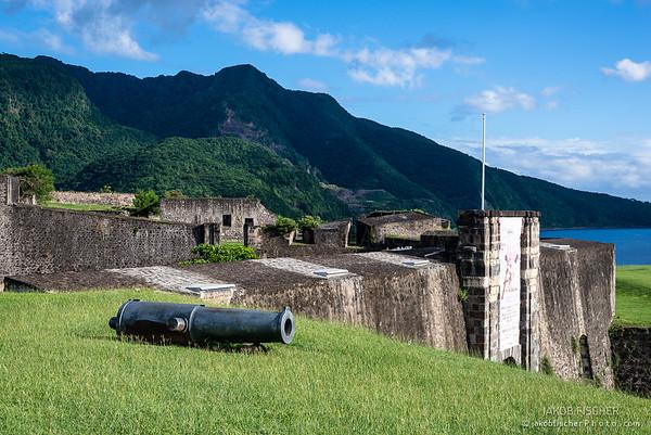 Fort Louis Delgres