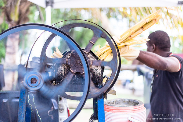 sugar cane juice production in Gosier, Guadeloupe