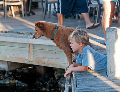 These two were captivated by the huge Tarpon swimming  in the water.