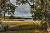 USA; South Carolina; Charleston; Boone Hall Plantation