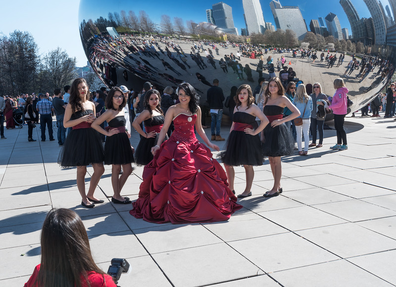 Mexican Quince at the Bean