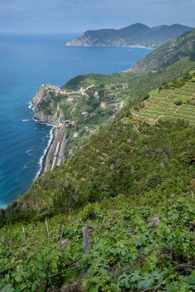 Walking to Corniglia