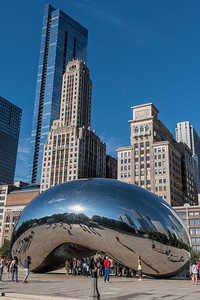 The Chicago Bean
