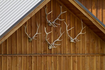 Antlers, Creed, CO IMG_6239