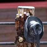 Estes Park Cowboy Hat IMG_4862