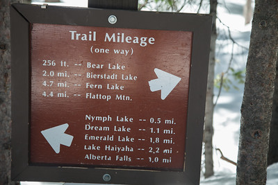 Bear Lake, RMNP IMG_9346