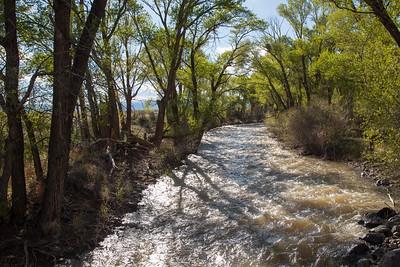 Alamosa River, CR 6, CO IMG_0013
