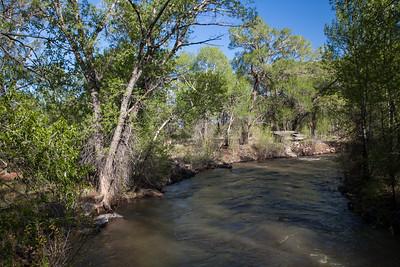 Alamosa River, CR 6, CO IMG_0017