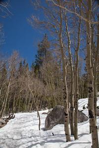 Alberta Falls, RMNP IMG_9357