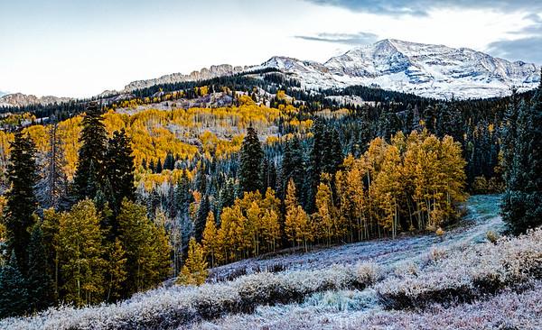USA; Colorado; Crested Butte; Kebler Pass