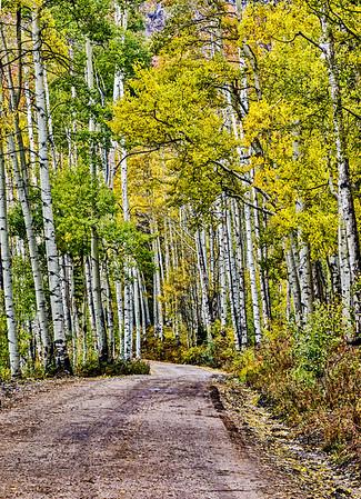 USA; Colorado; Crested Butte; Ohio Pass