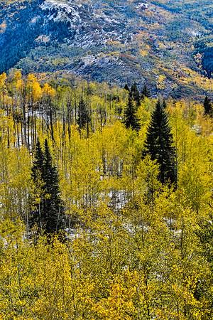 USA; Colorado; Gunnison; Mc Clure Pass