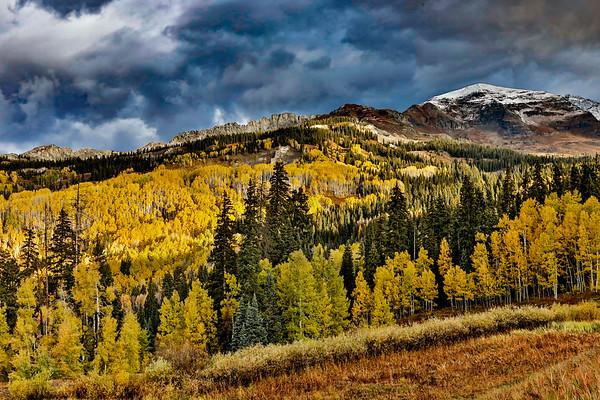 Colorado; USA; Crested Butte; Kebler Pass