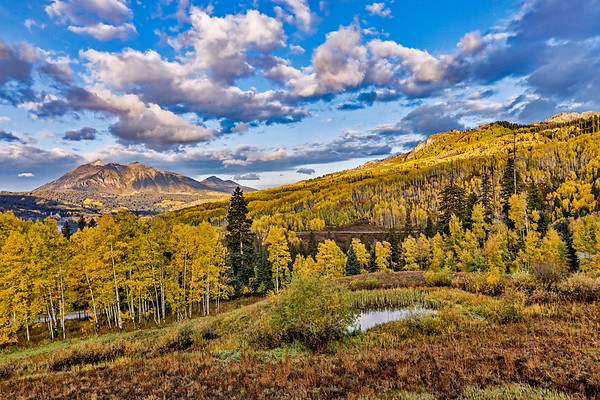 Colorado; USA; Crested Butte; Kebler Pass